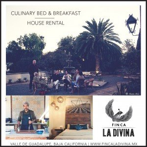 Finca La Divina, Valle De Guadalupe, Bed and Breakfast, Travel, Accommodations, Baja